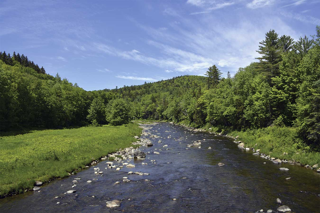Diamond River New Hampshire Fly Fishing