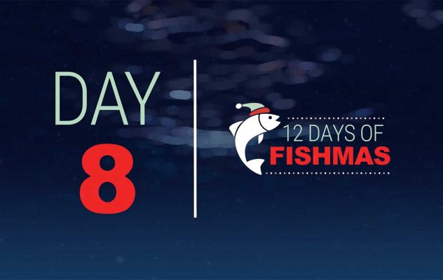 """Inside the Box: """"12 Days of Fishmas - Day 8"""""""