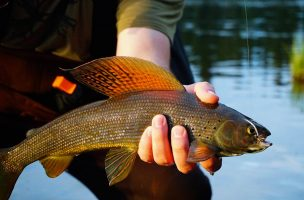 Podcast: Healing through Fly Fishing