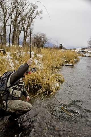 Fly Fishing Depuys Spring Creek