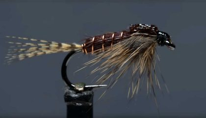 How to Tie a Phat and Phunky Pheasant Tail