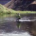 Fishing the Predator Fly with Skip Morris