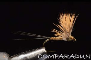 Tying Tuesday: Comparadun