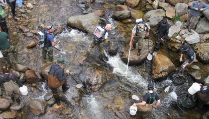 """Fly Fishing Conservation: """"Beyond Data"""""""