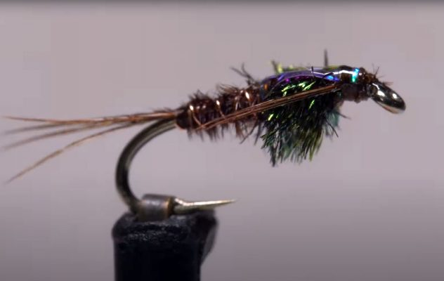 How to Tie a Flashback Pheasant Tail