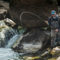 Best Spots to Find Trout and Bass