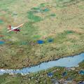Drilling Plan Finalized for Arctic National Wildlife Refuge