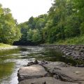 Salmon River in NY Closes Due to Low Water