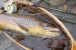 Orvis Pro Tips: Fall Streamer Fishing