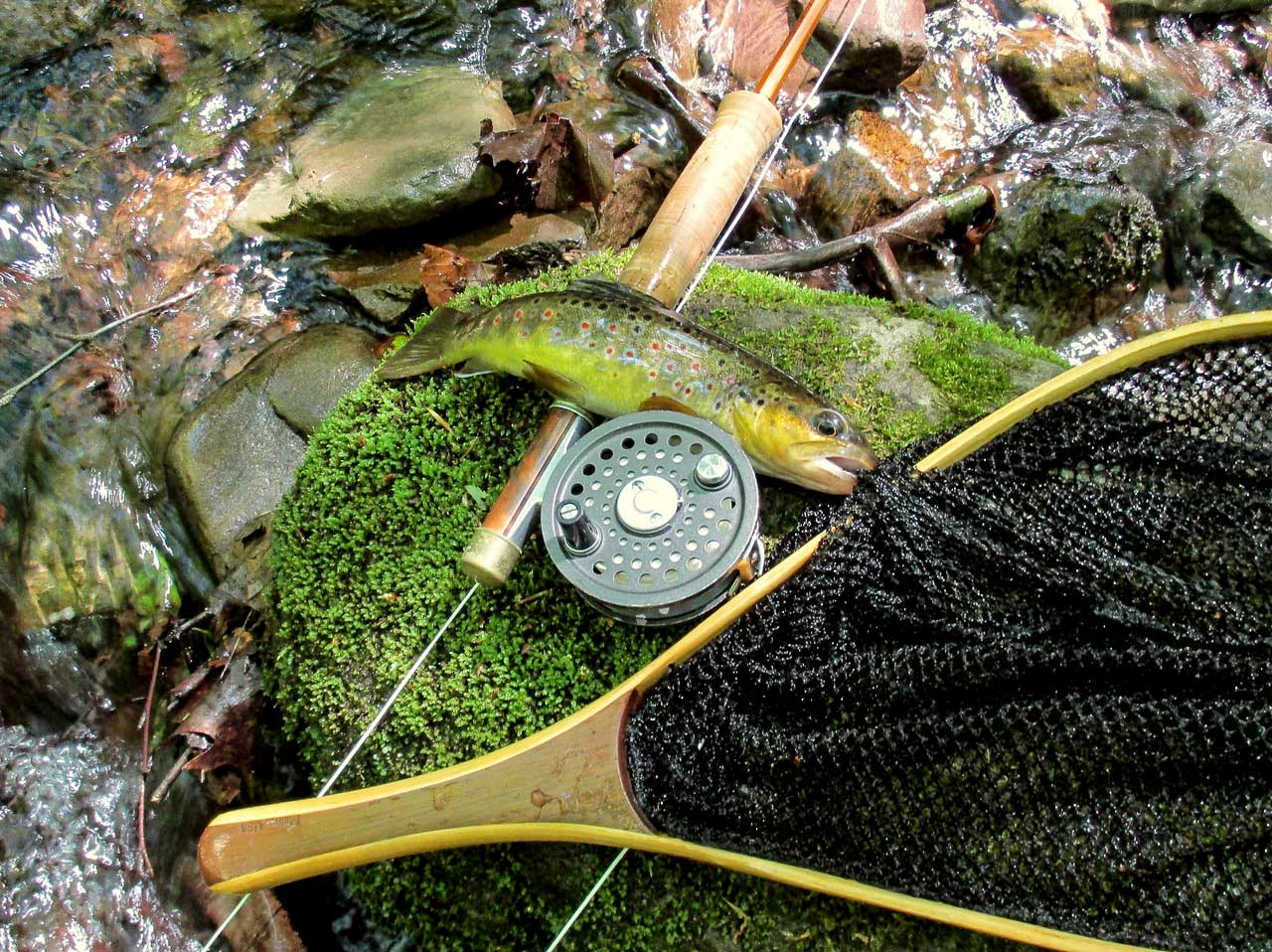 November Fly Fishing