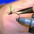 Tying Tuesday: Realistic Quill Bodies