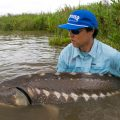 Giant, Native Fish Deserve Attention