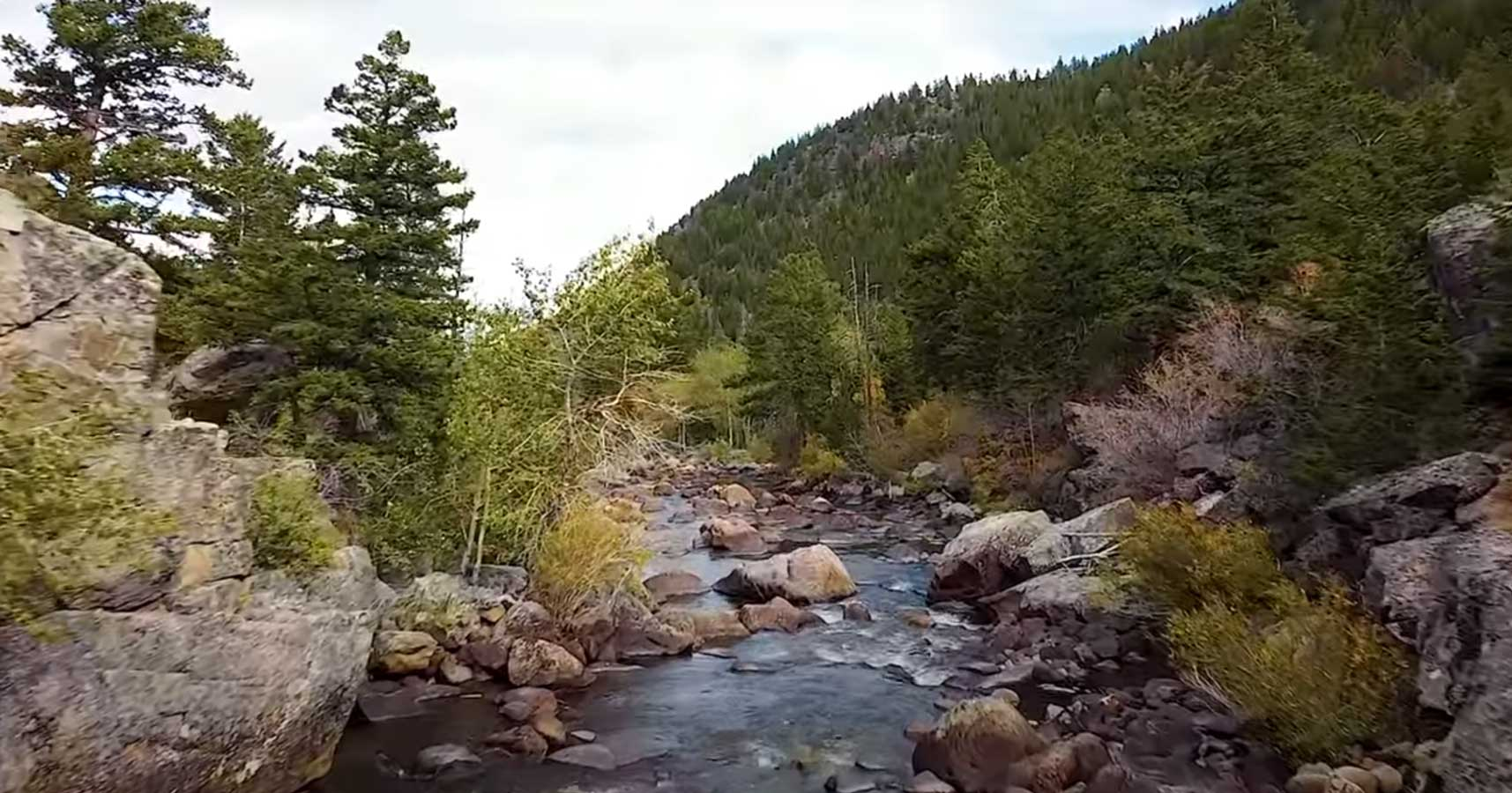 Wind River Fly Fishing