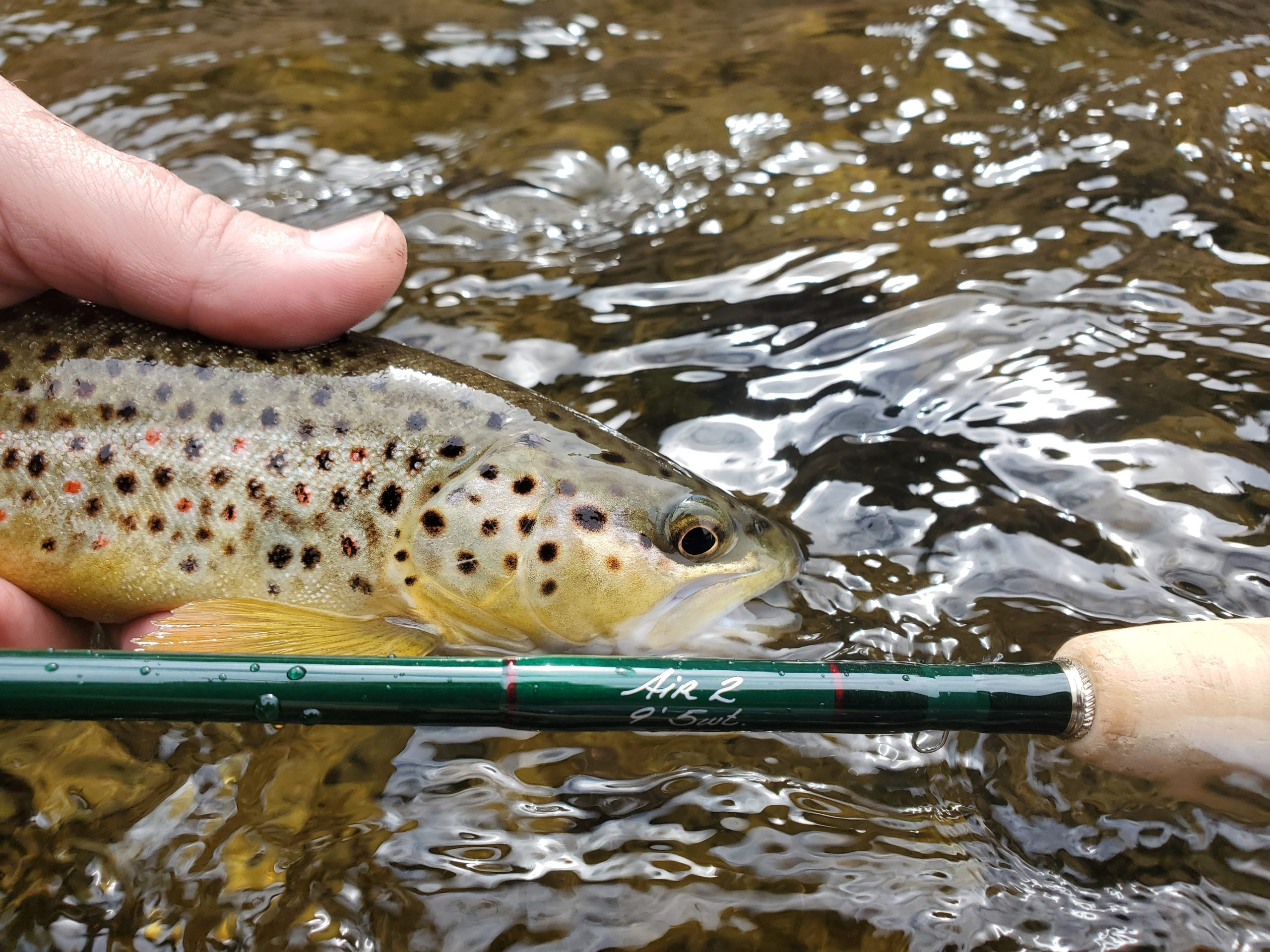 Winston Air 2 Fly Rod Review