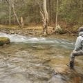 Tips: Hit the Head for More Trout