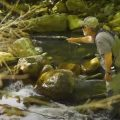 Ultimate Small Stream Fishing Guide