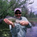 Fishing for Bass and Panfish in Weeds