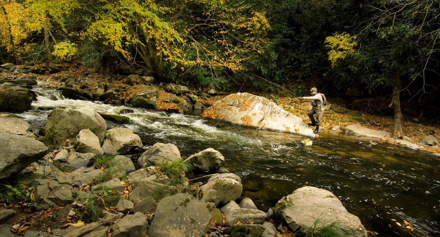 fly fishing south