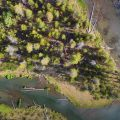 """""""Fly Fishing the Fall River, Central Oregon"""""""