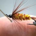 Tying Tuesday: The Brindle Bug