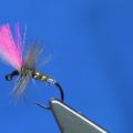 Tying Tuesday: Jig Head Indicator Fly